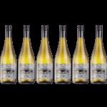 Vino Tante Frizzante 2019 BVS